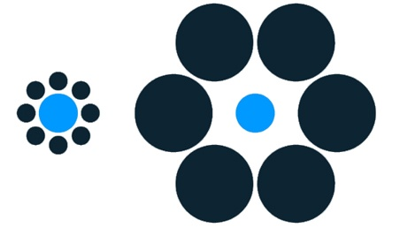 The blue circles are the same size! I still don't believe it.
