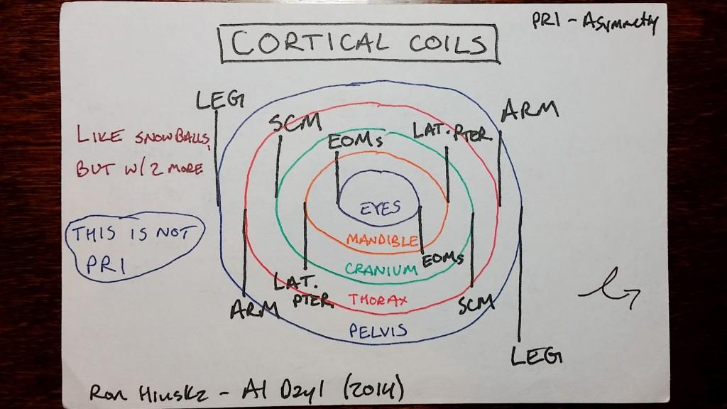 coils1