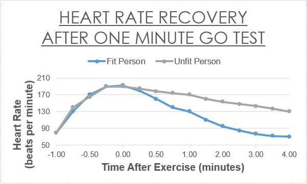 How to Use a Heart Rate Monitor – LanceGoyke com
