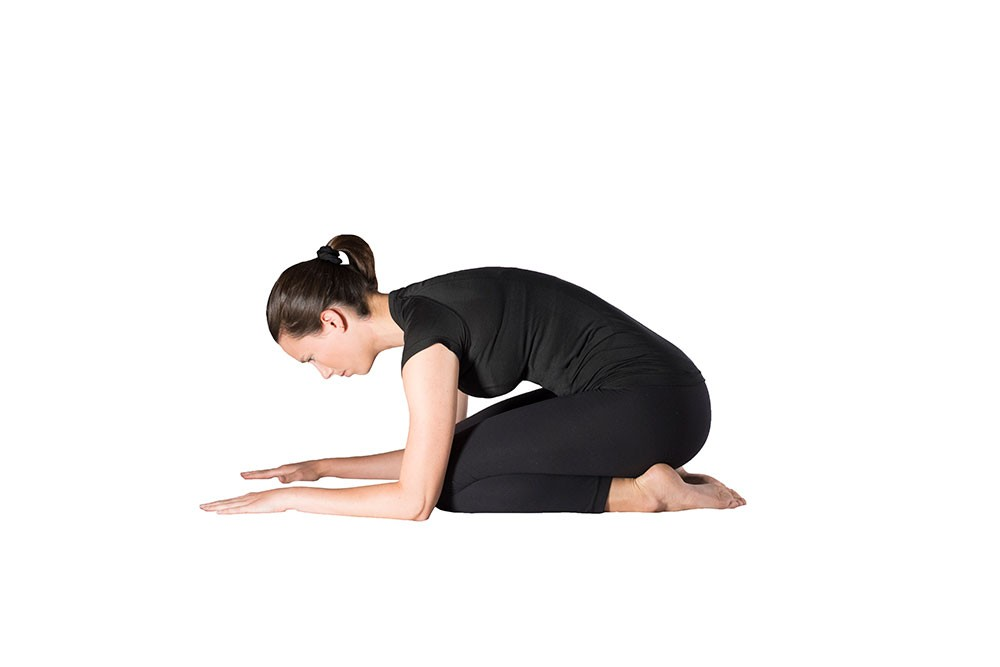 Woman doing quad stretch on elbows and knees with butt rocked back to heels and arms actively pushing into the ground