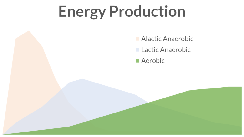 A graph showing total energy production from the three energy systems in the human body: alactic anaerobic, lactic anaerobic, and aerobic. The Aerobic System is highlighted.
